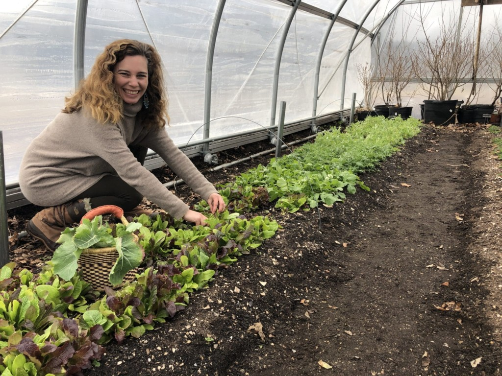Healthy Soil, Healthy Food with Earth Care Farm